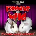 Rabbits Gone Wild Box copy