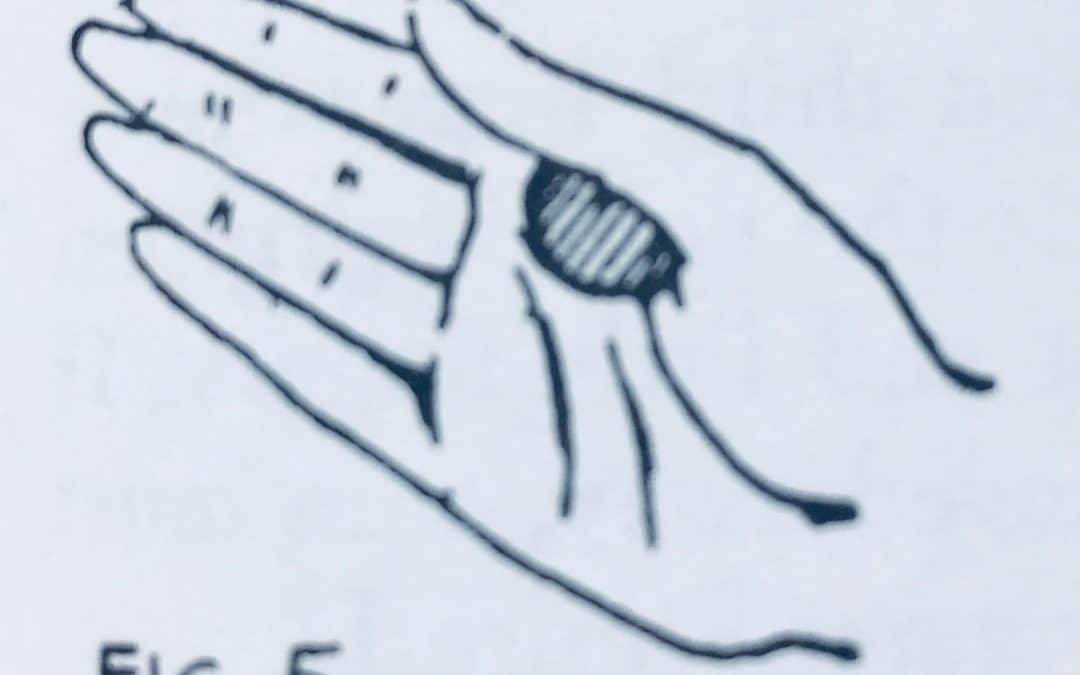 The Front Thumb Palm